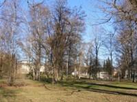 8 Afgańczyków zatrzymanych w Austrii, podejrzanych o morderstwo Turka w krwawej bójce