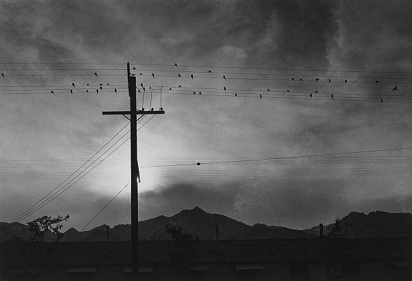 druty Manzanar