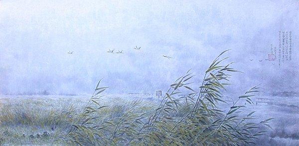 ptaki przekraczają granicę